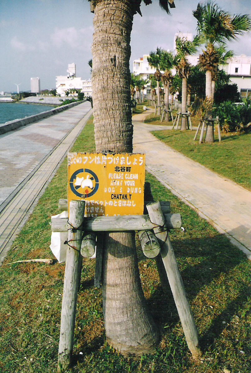 'Dog waste management' sign along Araha beach.