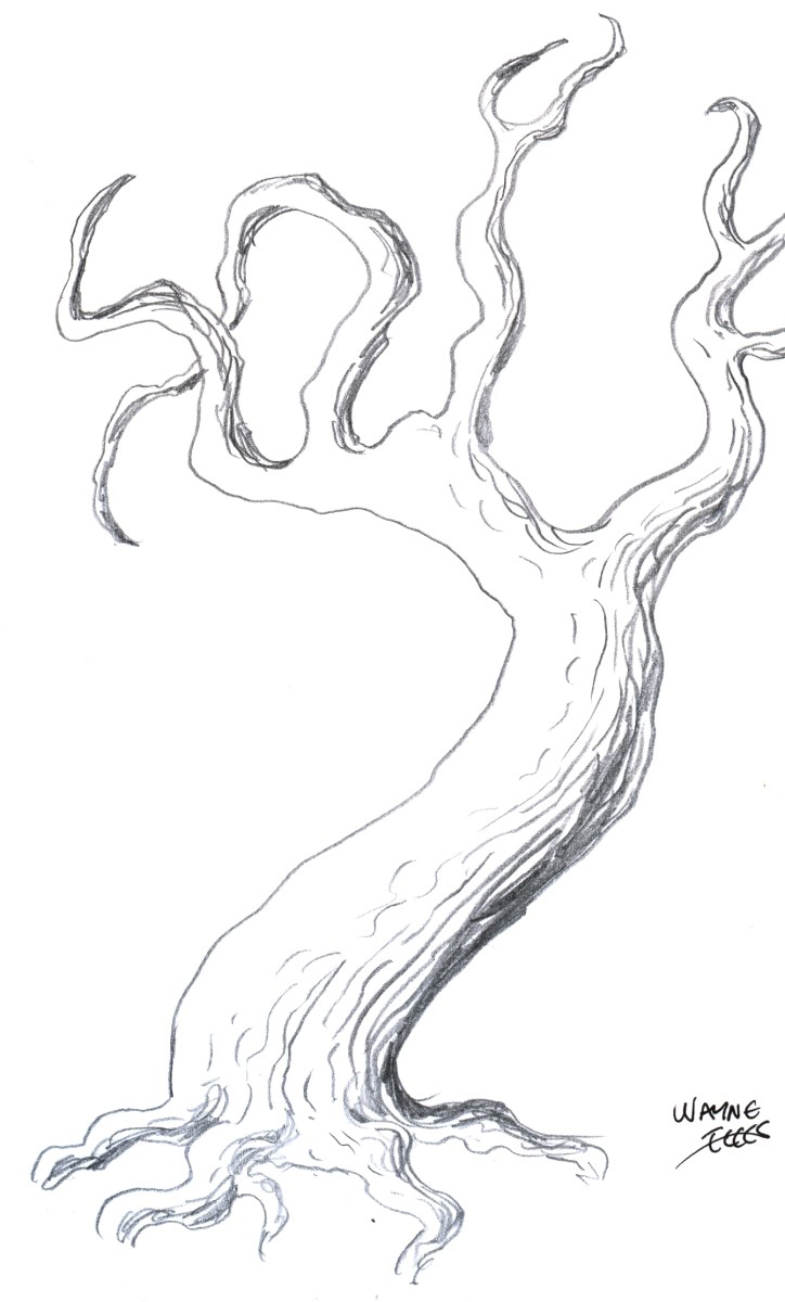 How to draw a tree  drawing tutorial of drawing a tree Easy Pictures To Draw Of Trees