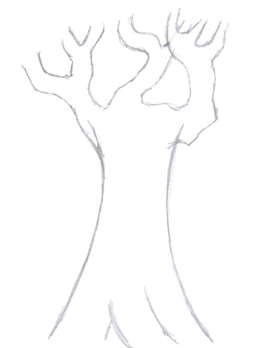 Here the branches have been added and they are not overly complex, so chill out!