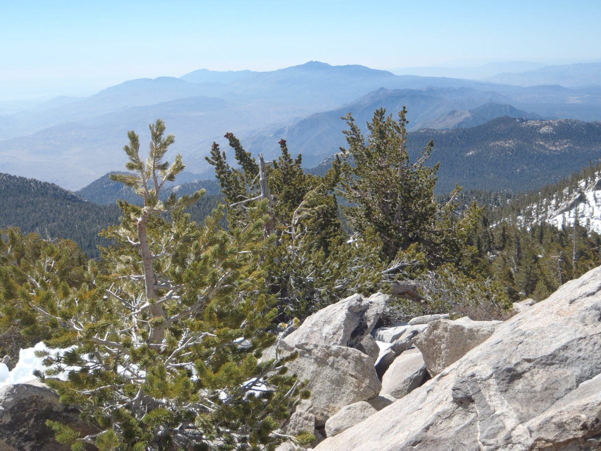 Toro Peak from San Jacinto.
