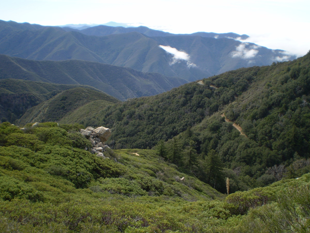 Looking down Trabuco Canyon from the Holy Jim Trail.