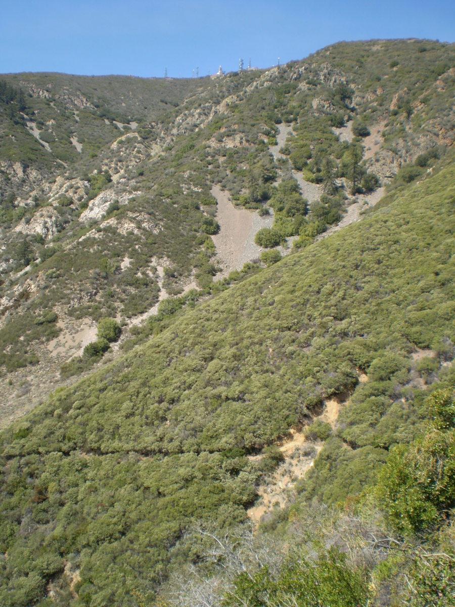 Santiago Peak from lower Holy Jim Trail.