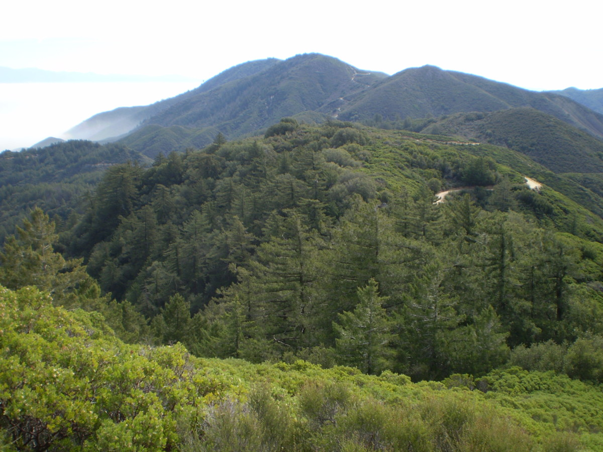 Trabuco Peak from the Upper Holy Jim Trail.