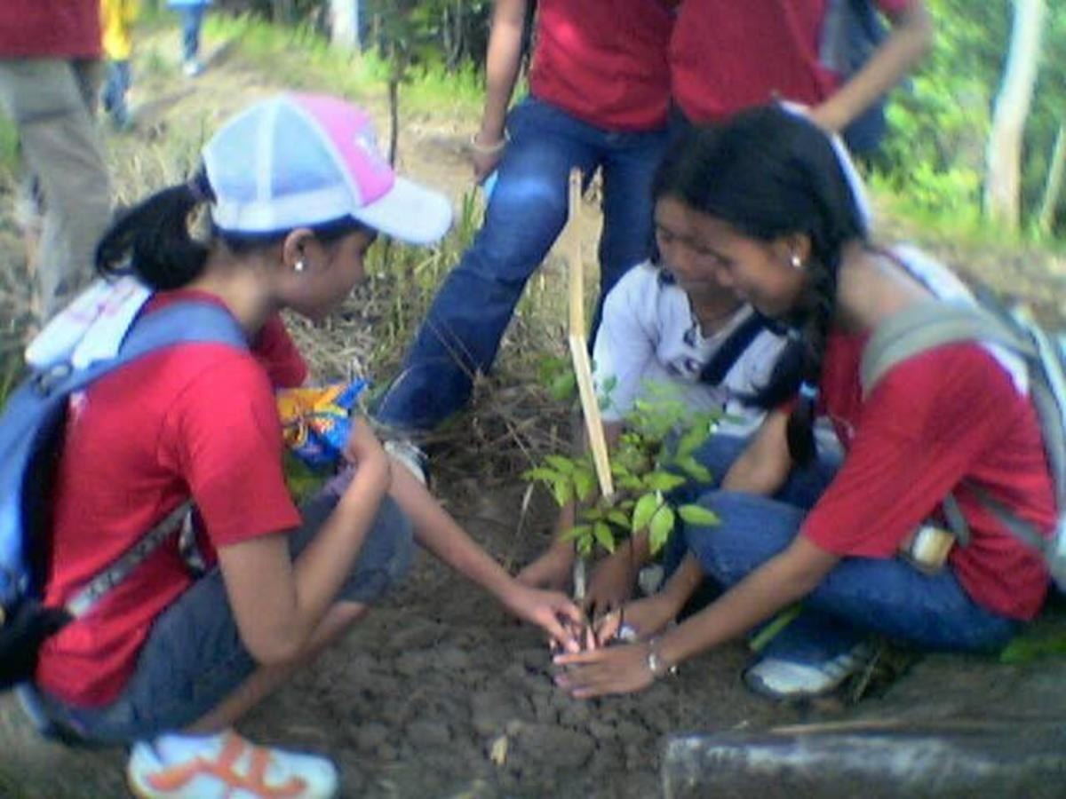 Tree planting is one of the most potent ways of protecting our planet.