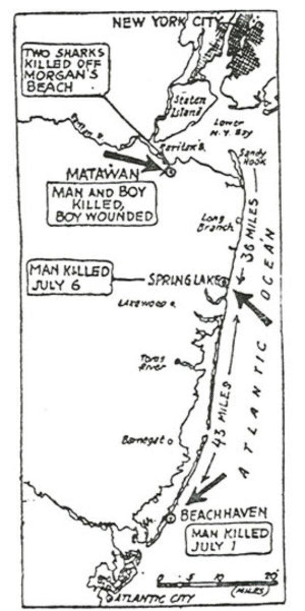 1916-shark-attacks