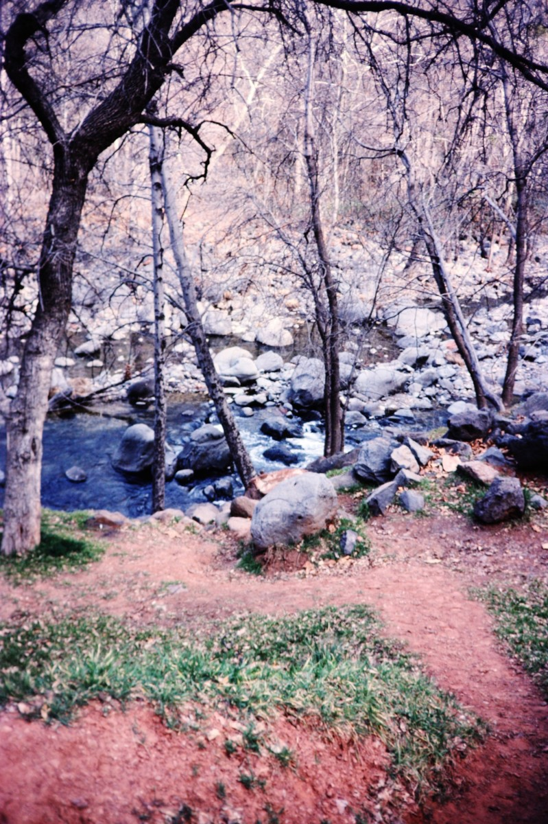 Oak Creek in Oak Creek Canyon