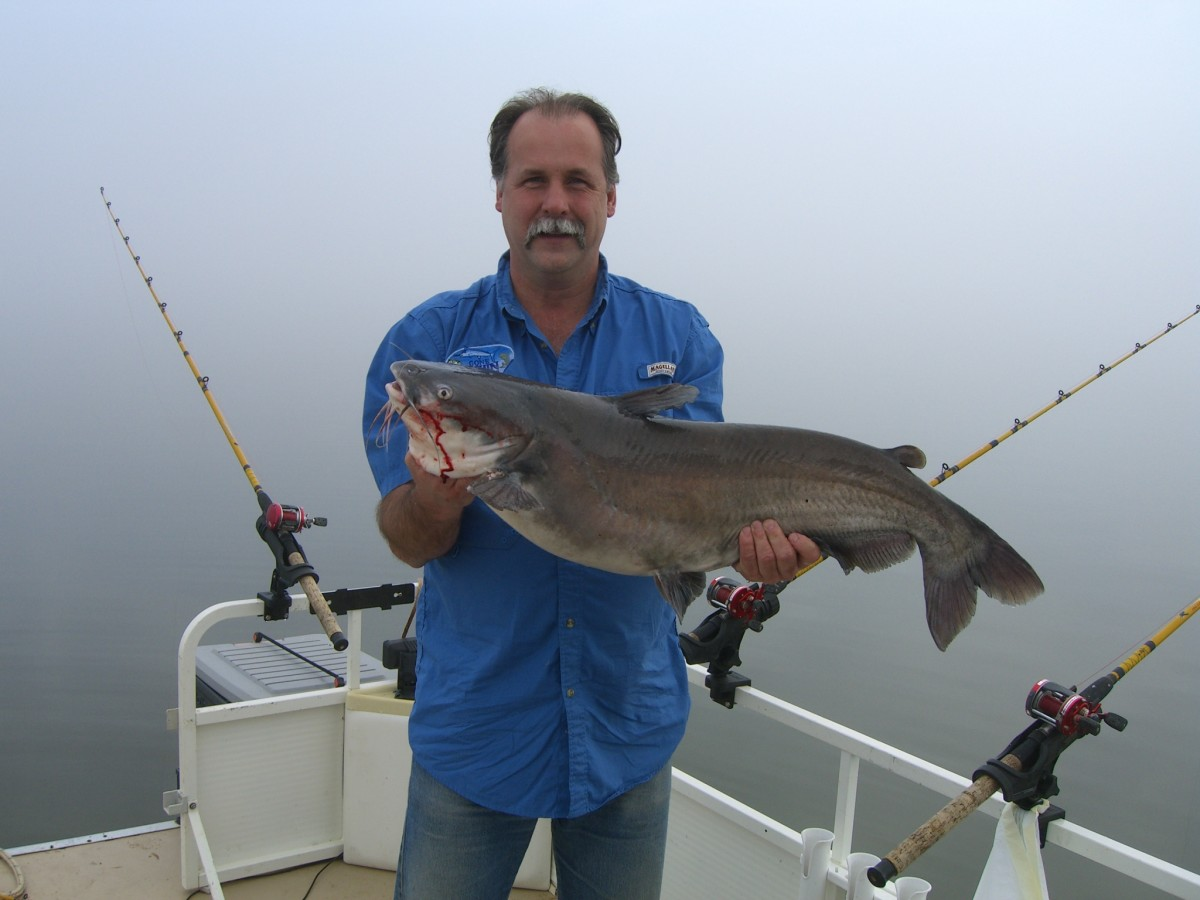 Gone Fishin Club member Gary Turner with a real good blue catfish caught on Lake Marion in South Carolina.