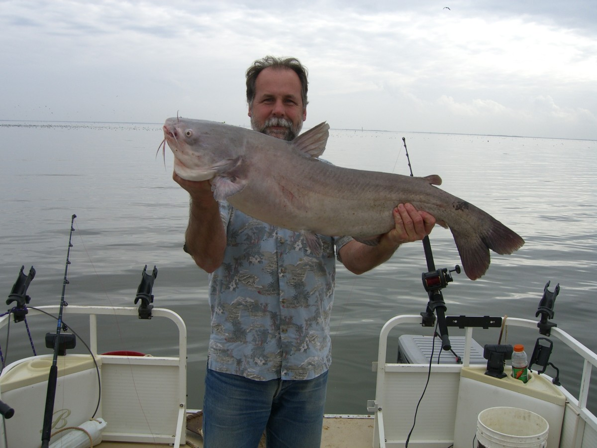 Gone Fishin Club member Gary Turner with a good blue catfish caught at Santee Cooper.