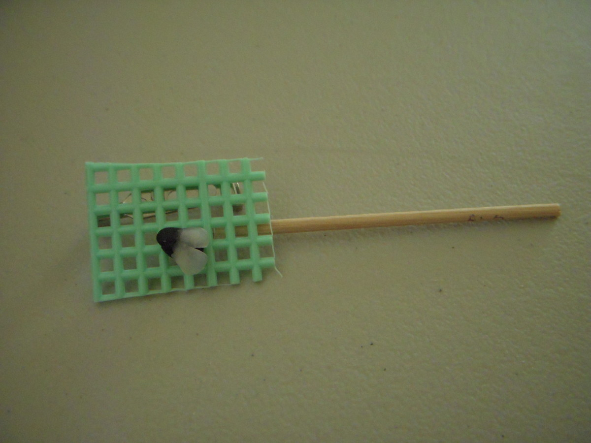 Fly Swatter front, with fly showing