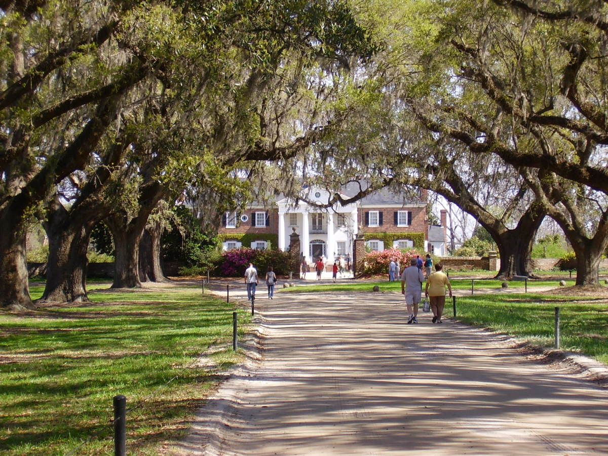 Historical Tours: Boone Hall Plantation