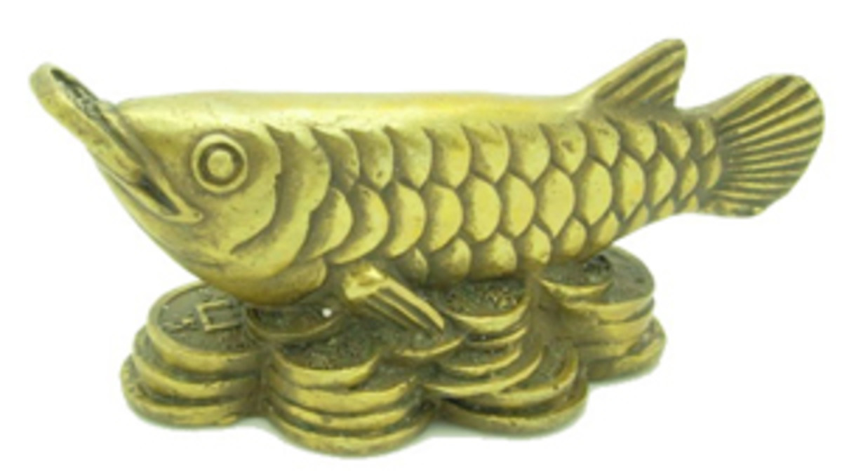 Arowana Fish Feng Shui Symbol for Good Luck and Prosperity.