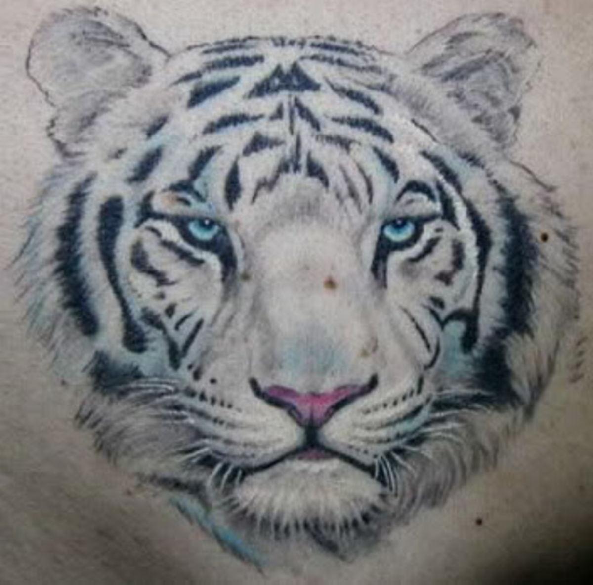 Blue Eyes White Tiger Tattoo