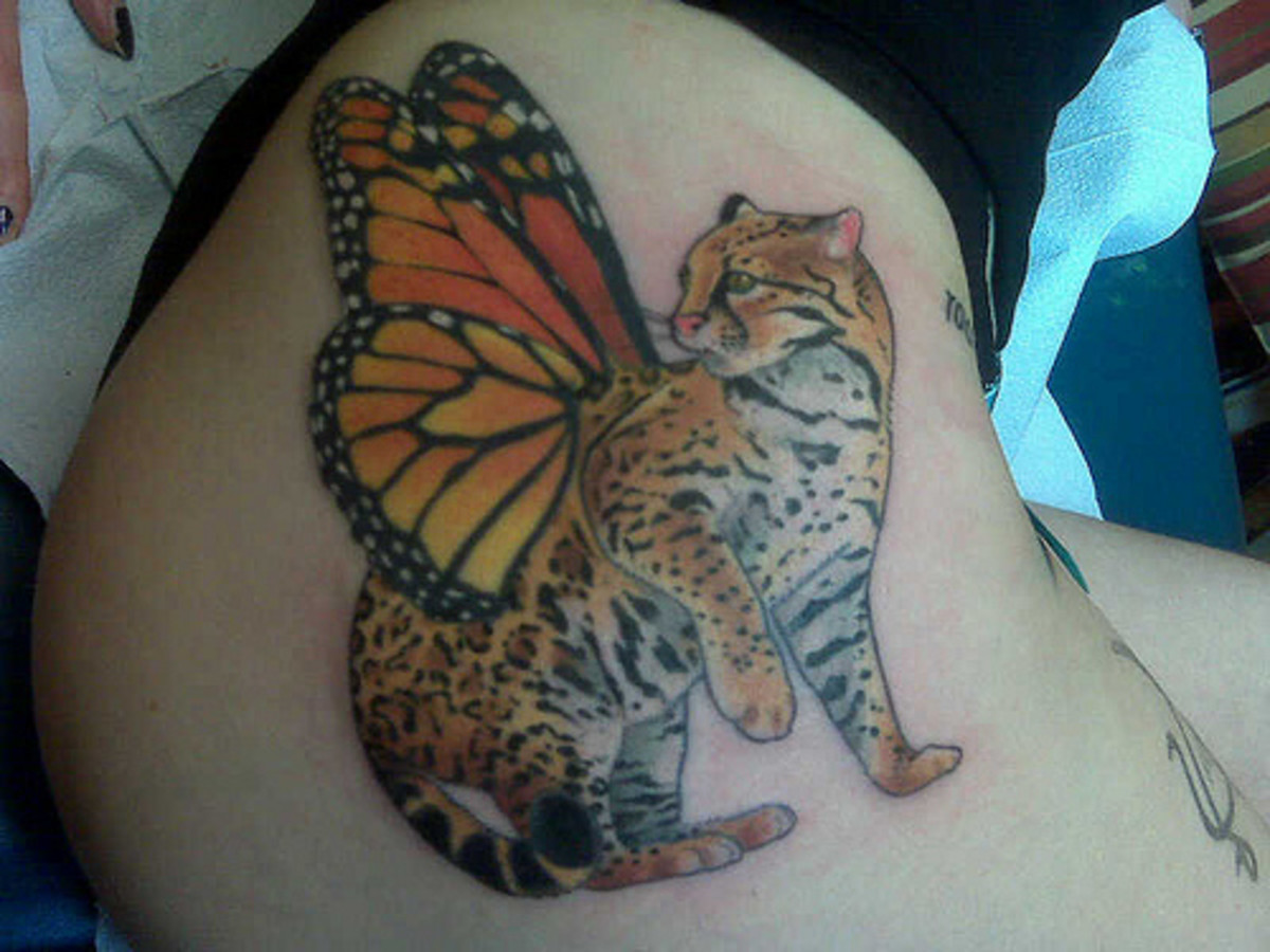 She looks surprised to find wings on her back.  This looks more like an ocelot, but it is cute.