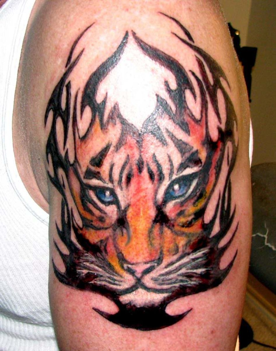 The mix of tribal and tiger appeals to me.