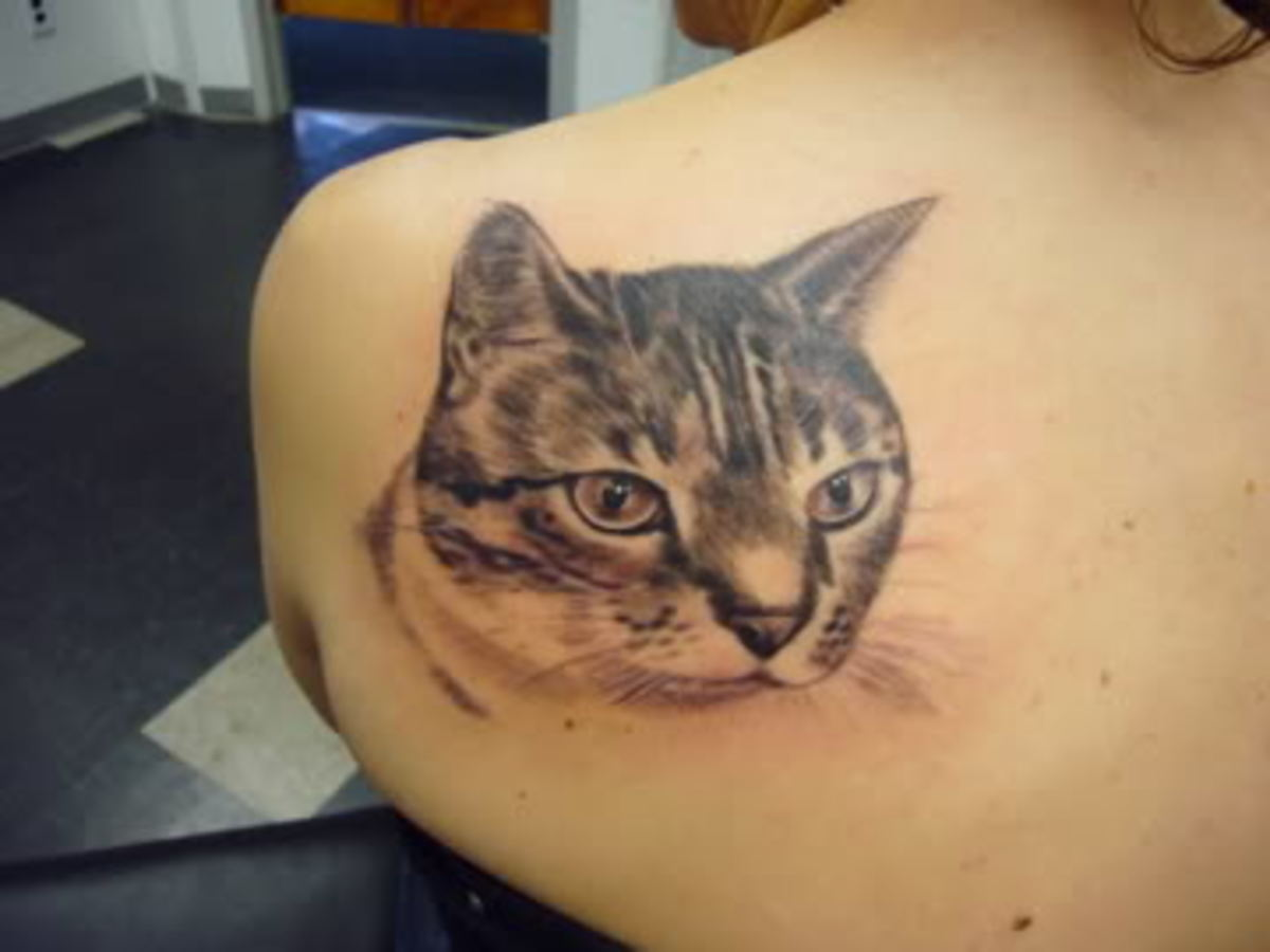I think I like the eyes on this cattoo.  The choice of brown is interesting.