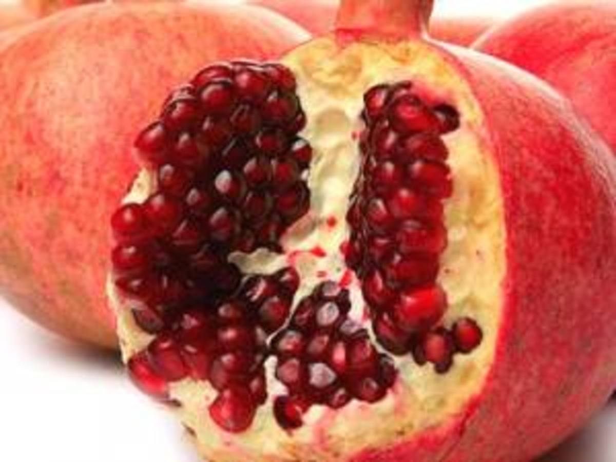 How to Grow Pomegranates from Seed