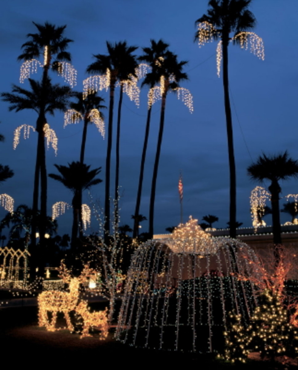 The Mesa Arizona Mormon Temple has spectacular Christmas lights throughout the garden.