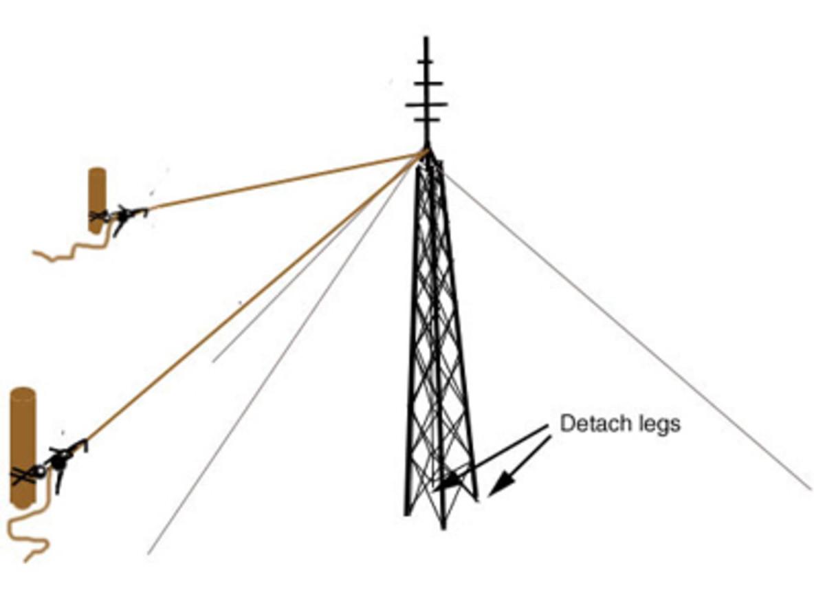 Detach or cut the legs at the base.