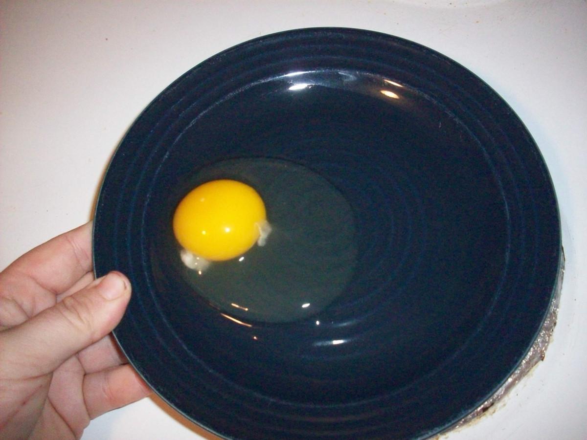 Egg Albumen and Yolk