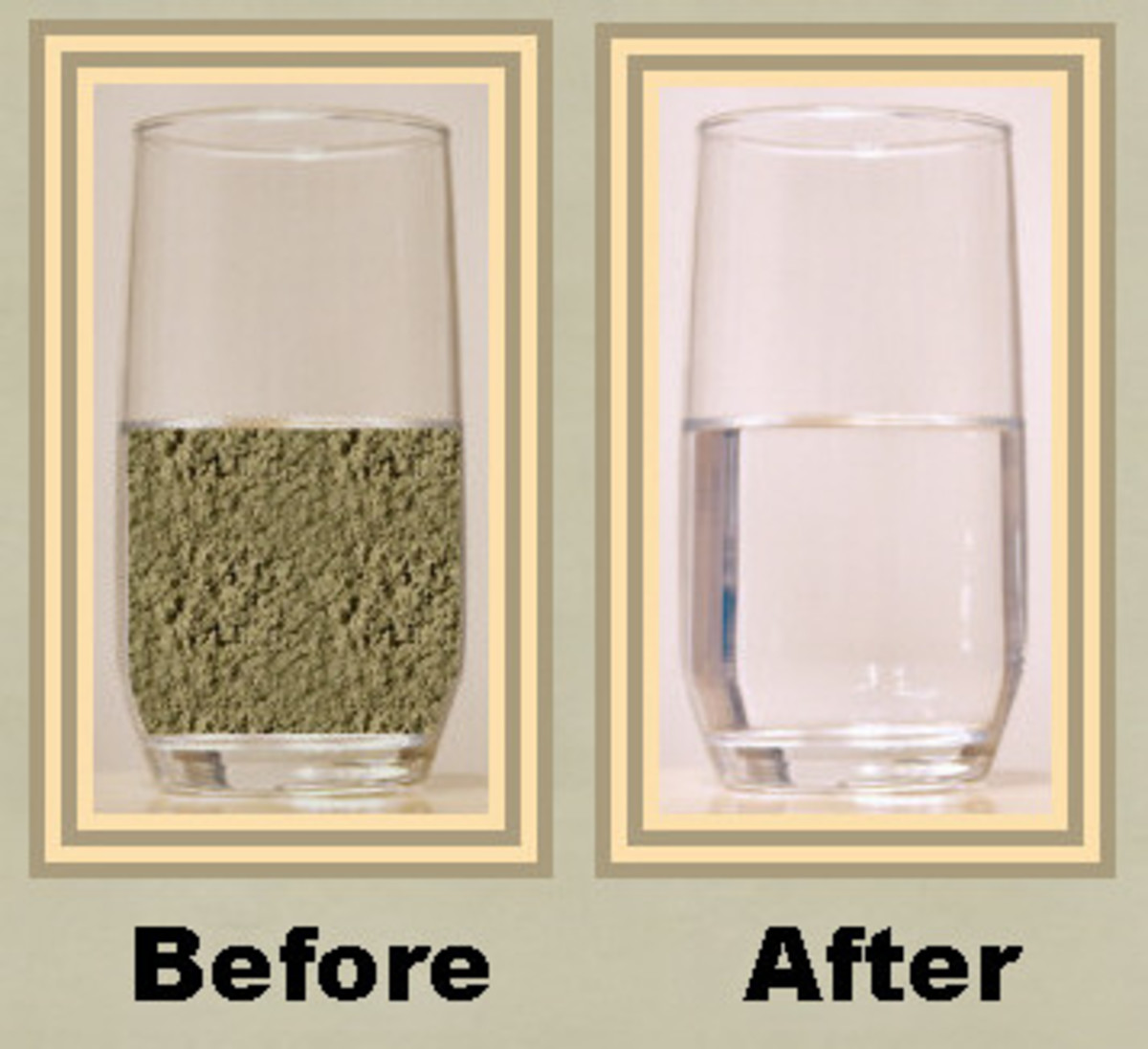 Moringa seeds are incredible water purifiers!