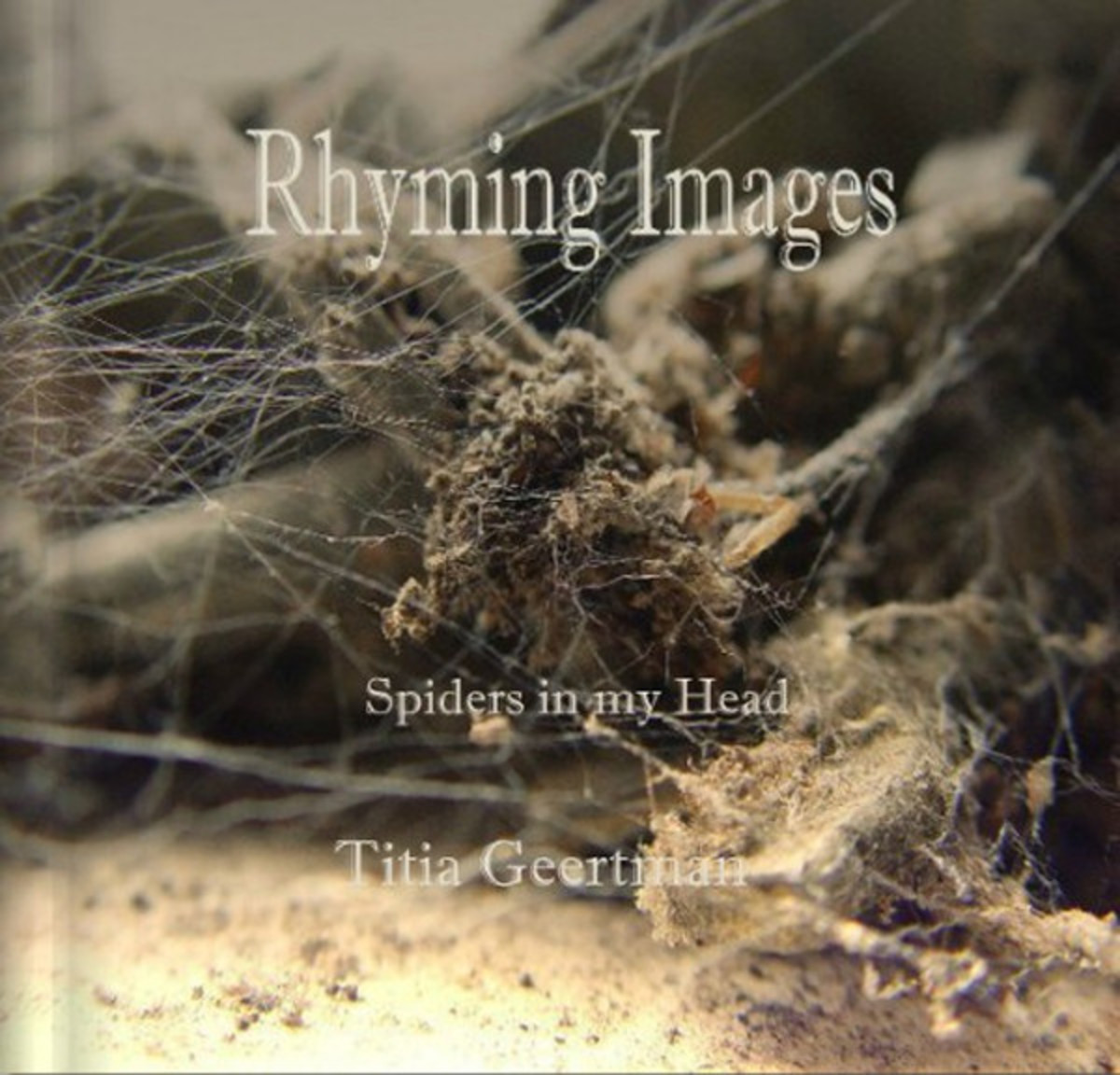 Poetry and Photography - Spiders in my head