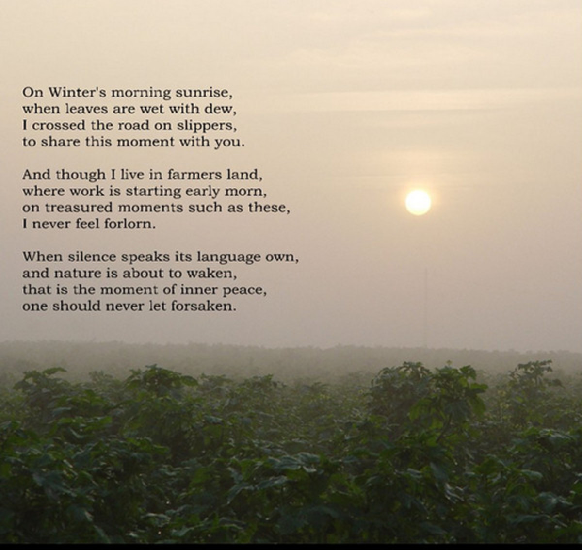 Rhyming Images - page from my book 'Seasoning the Sun'.
