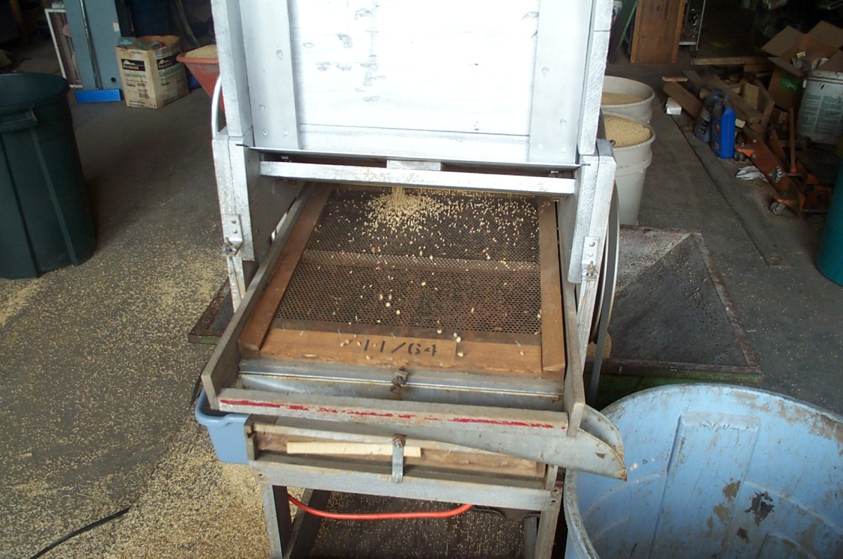 The fan mill electric motor is started, and the hopper is adjusted to let only a trickle of grain pass through.