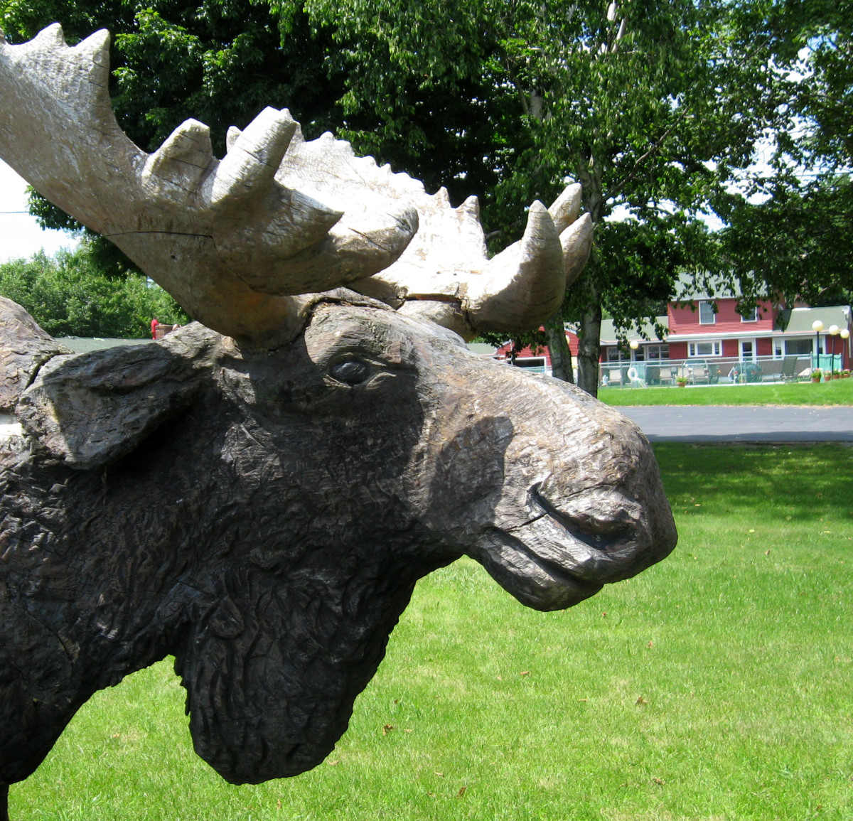Moose are popular in New England, so you'll see statues of them in many places.