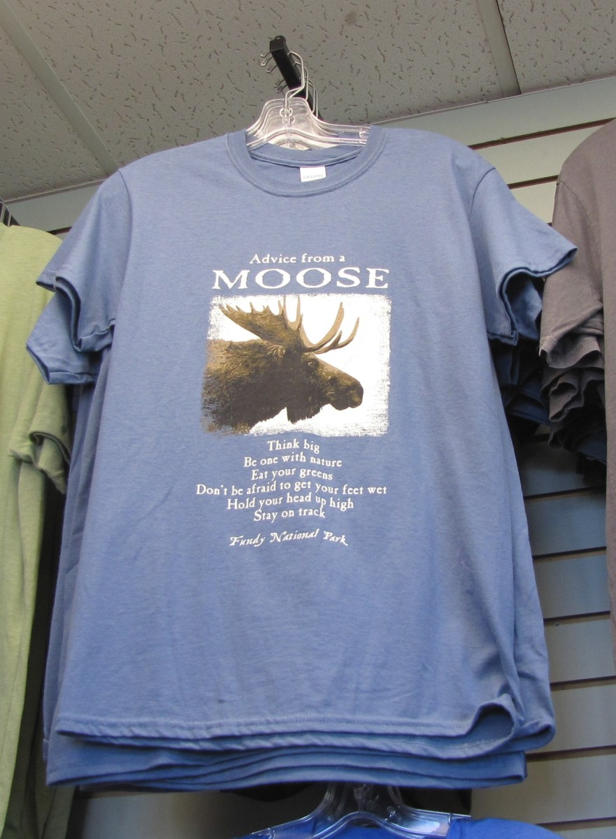 Isn't this a great shirt that I saw while traveling in Canada!