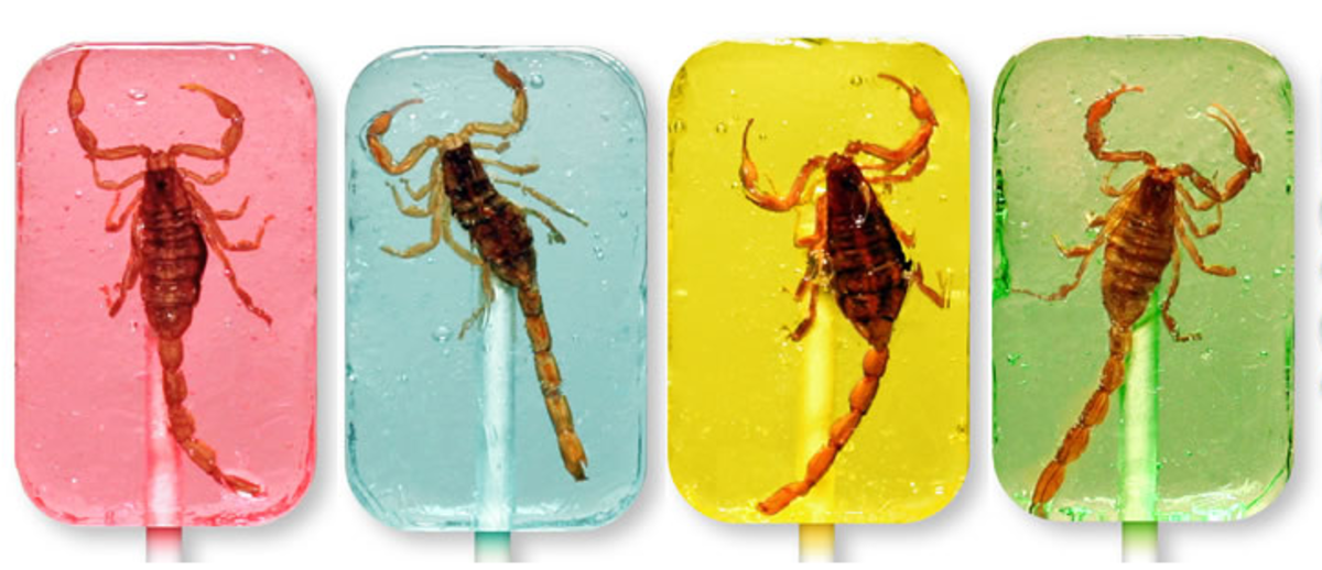 Creepy Crawly Insect Infested Lollipops