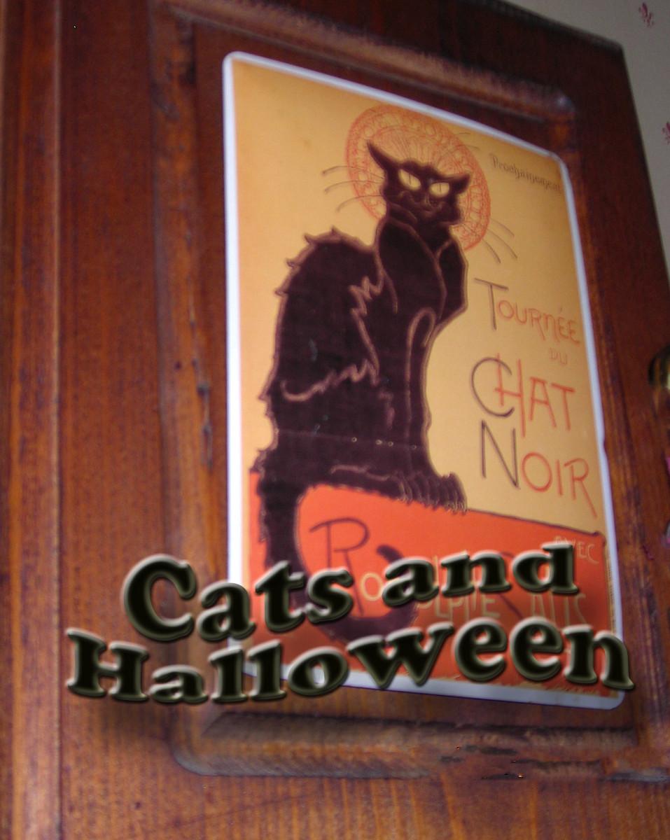 This is my black cat on metal, hanging on a wooden door
