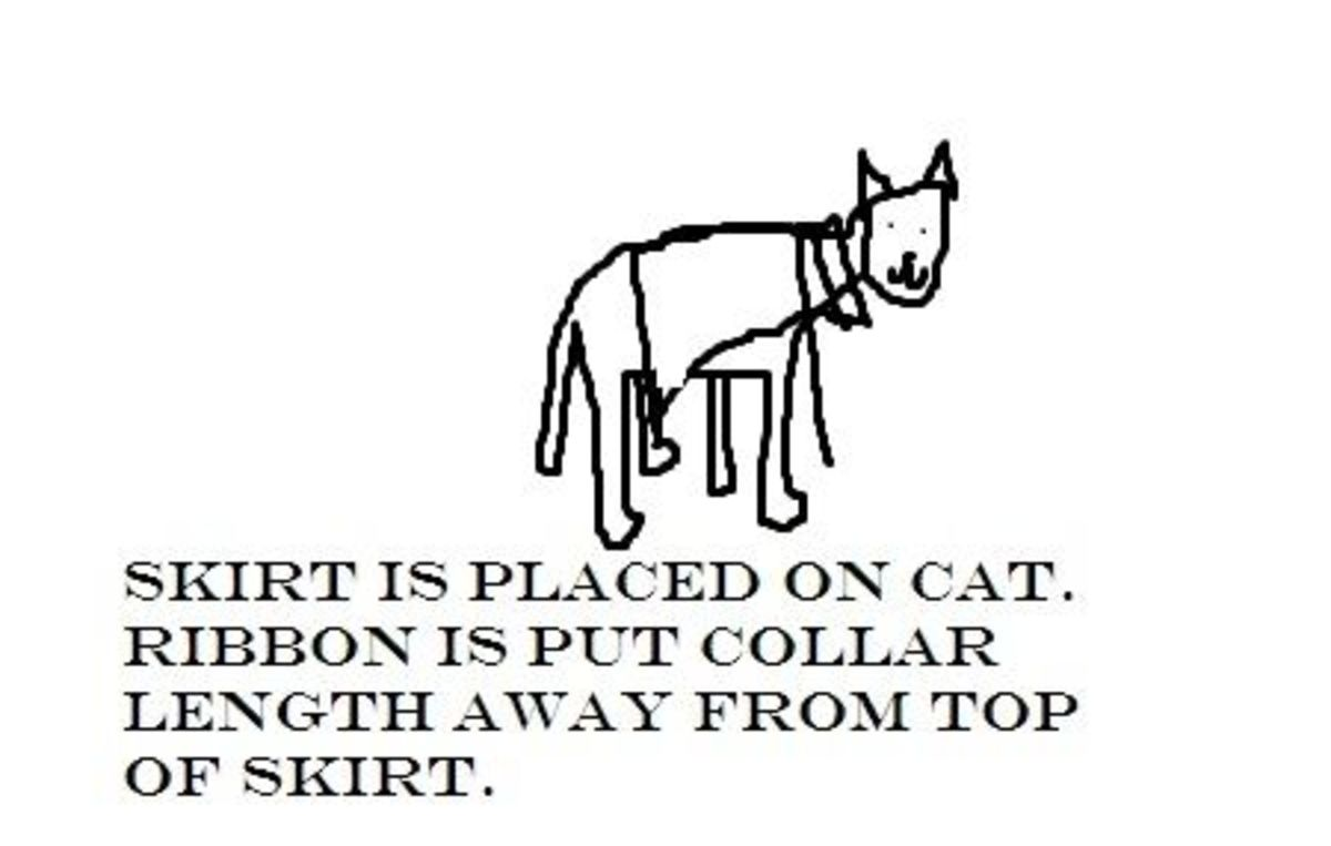Put the skirt onto the cat.  Put the ribbon on as well.