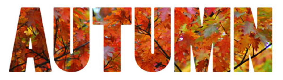 Pattern filled Autumn word art