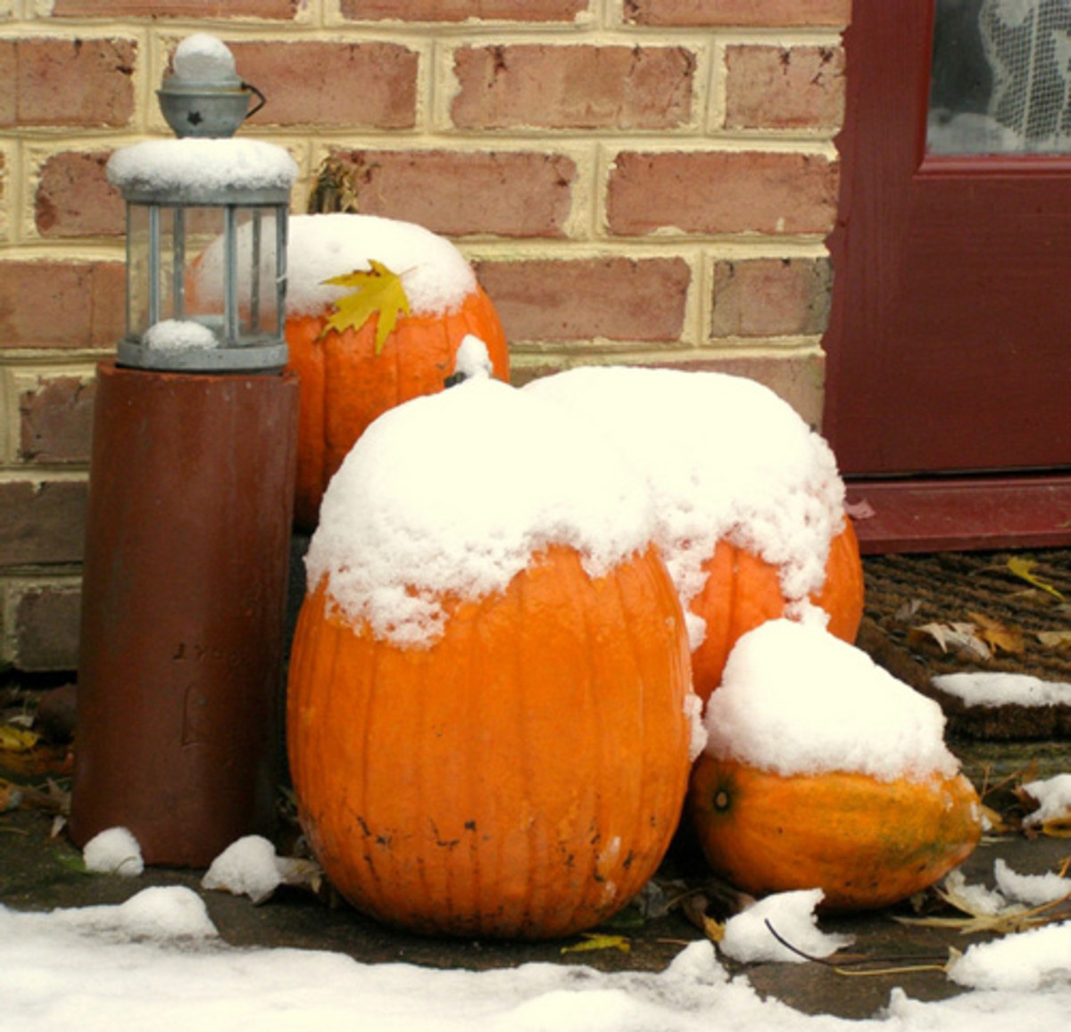 Chilly late fall snow on pumpkins