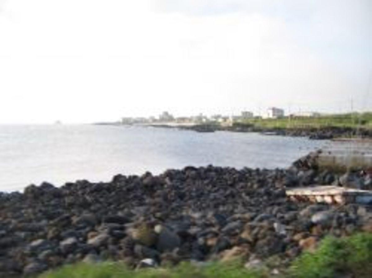 Don't Waste your Time on Jeju Island, South Korea