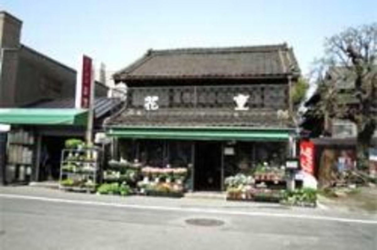 Hana Ju Flower Shop in Gokusen