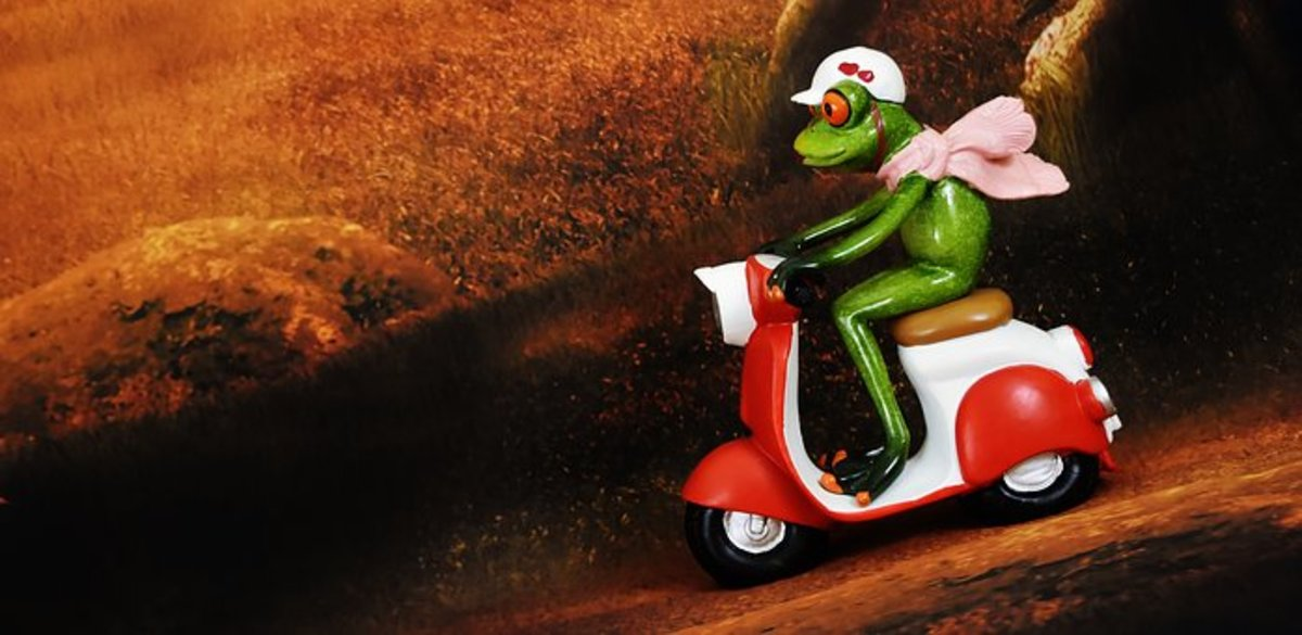If a Frog had wheels they wouldn't bump their butts - Idiom