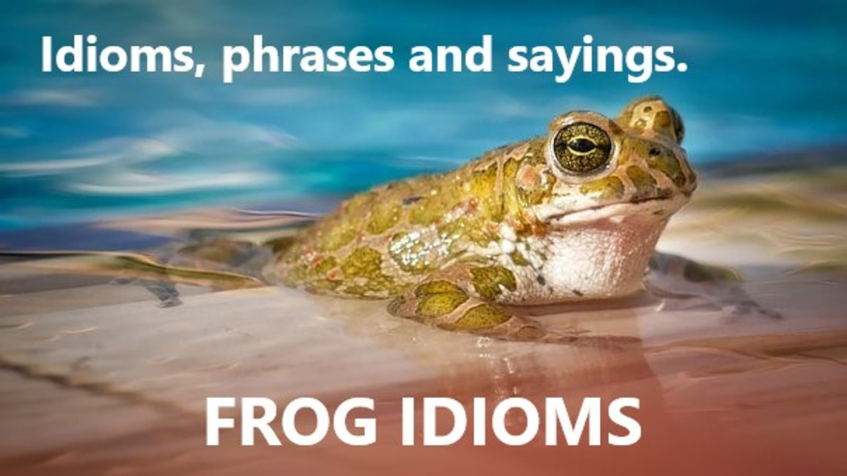 Idiomatic expressions sourced from the life and behaviours of frogs.