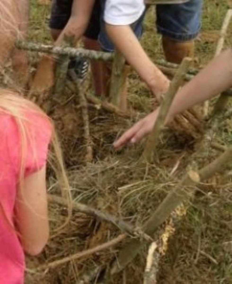 Building a Jamestown-style waddle and daub house during Lesson 1: Jamestown Lesson