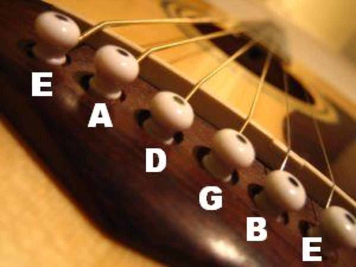 The Guitar Bridge--up close and personal. Home of the strings.