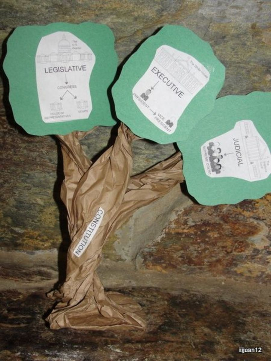 Three Branches of Government Tree craft