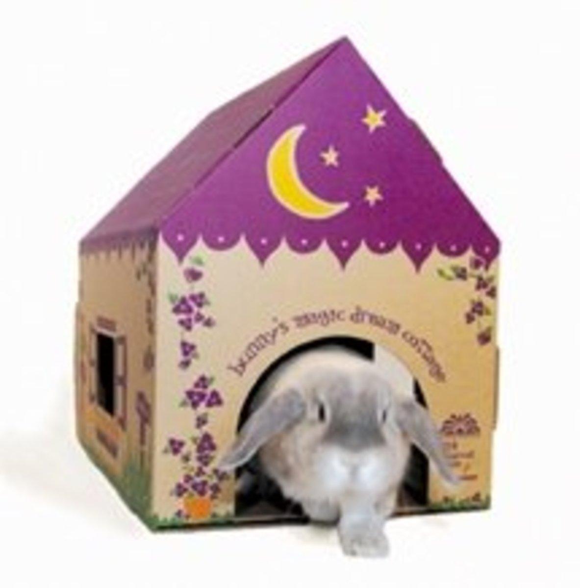 Indoor Rabbit Homes