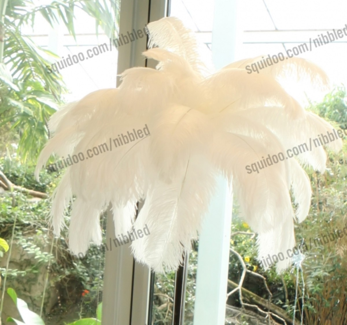 Up close white ostrich feather centerpiece