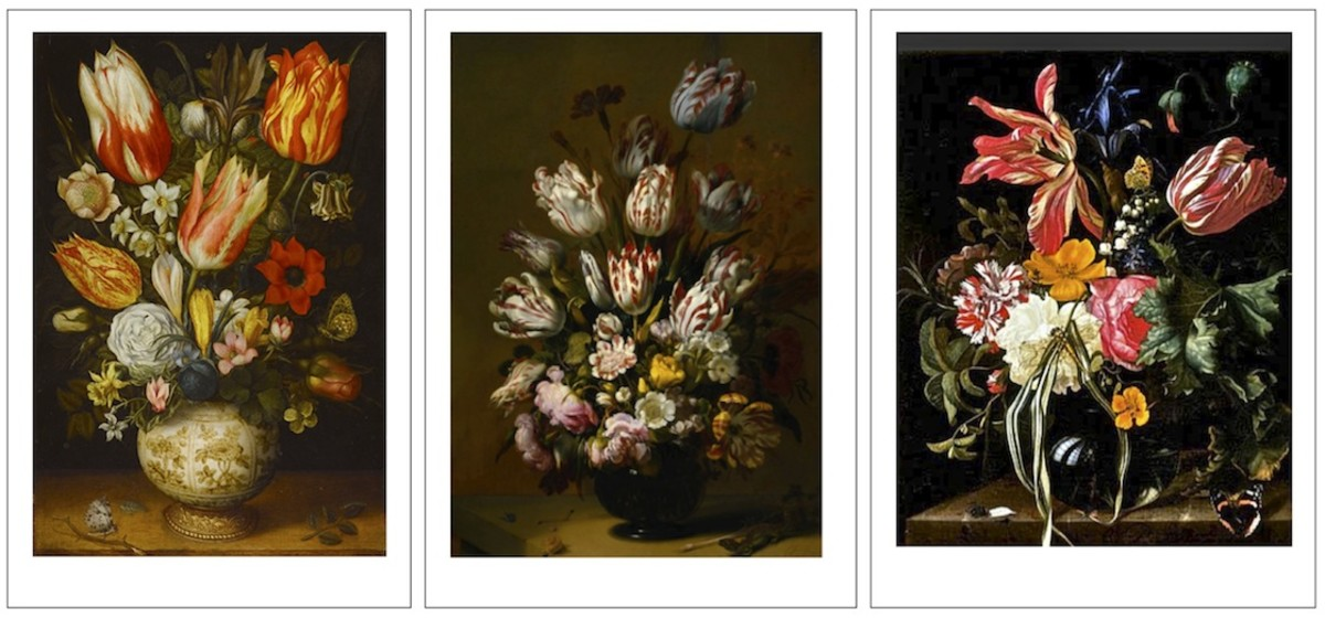 A trio of paintings from the height of Tulip Mania. (Described below).