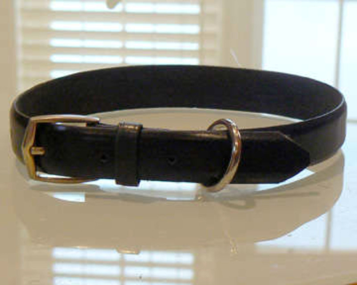 Upcycled Leather Dog Collar via Instructables
