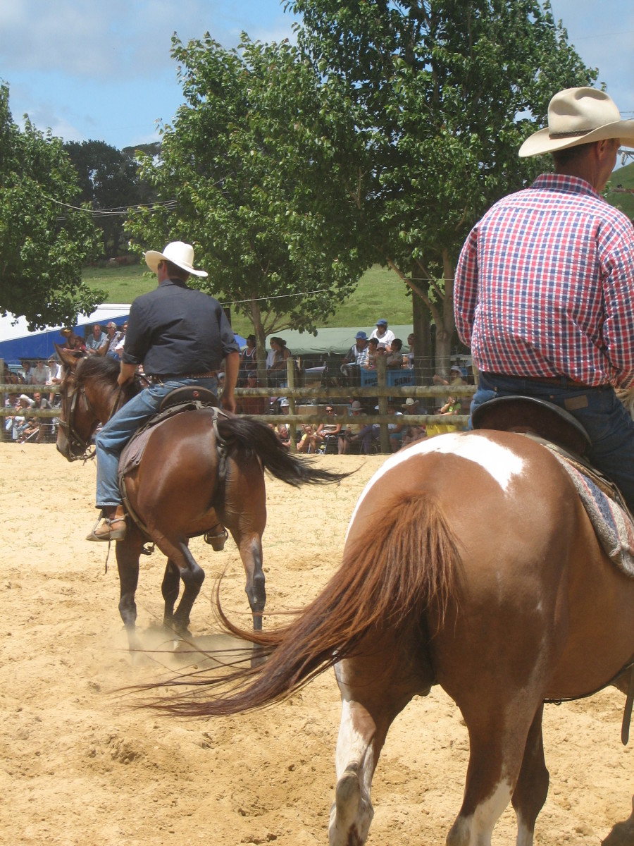 Support Riders in Rodeo