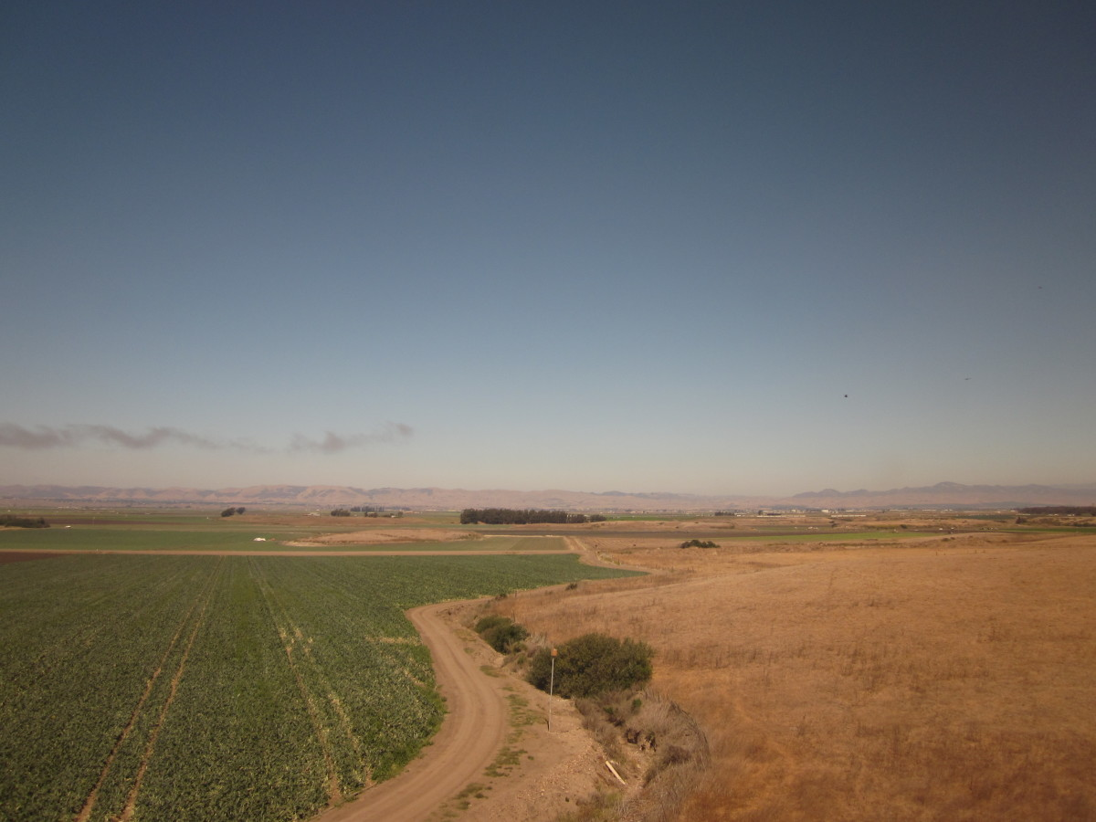 amtrak-things-to-consider-when-traveling-by-train