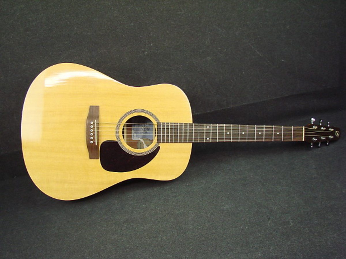 the-seagull-m6-acoustic-guitar