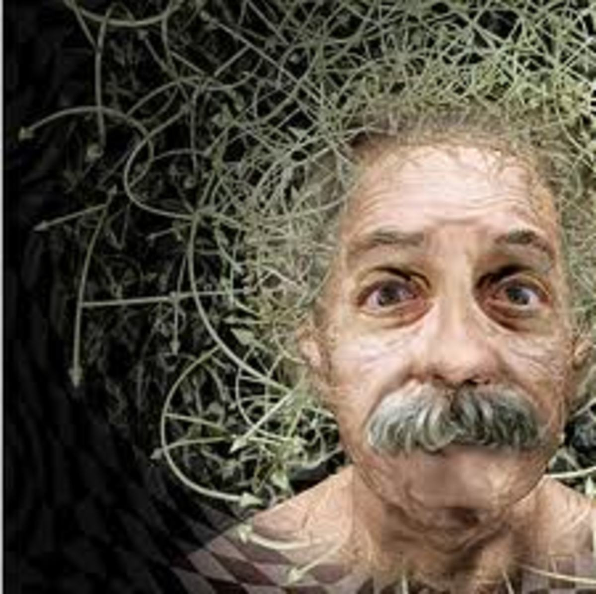 the-quantum-entanglement-of-minds-recent-findings-in-the-world-of-neuroscience