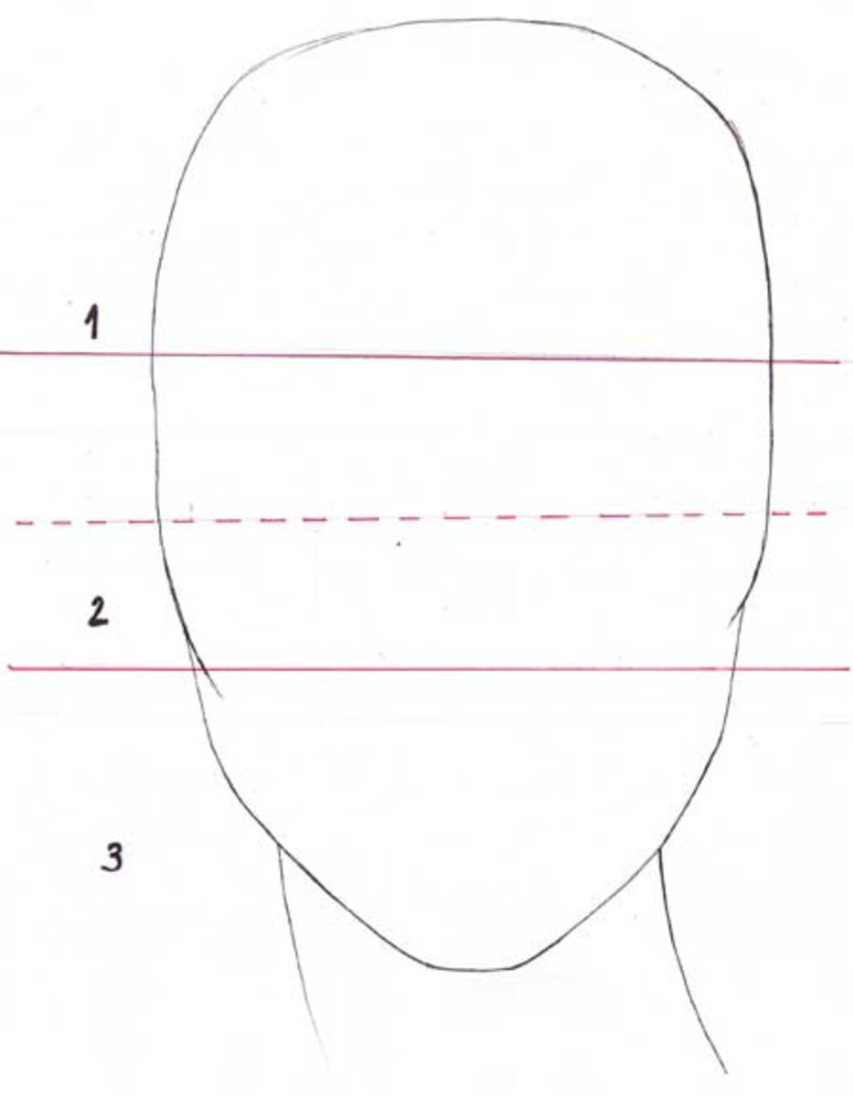 Start by dividind the head in 3. Mark the middle of the second section.